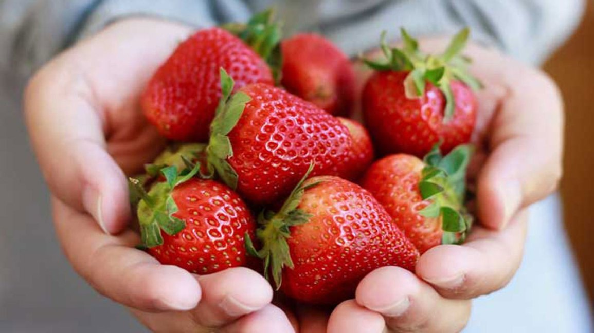 5 Super Cool Reasons to Eat Strawberries